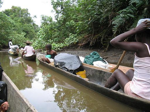 Recogen la Piangua en el rio Izcuandé - pingueras