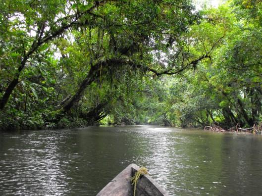 Esteros hacia el rio Napi