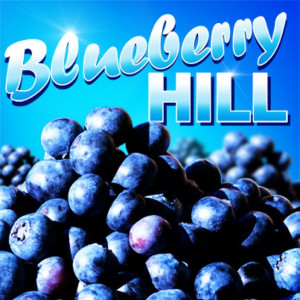 blueberry_hill403x403_1